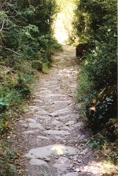 camino canfranc